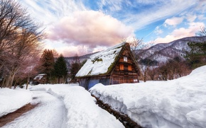 Picture winter, road, snow, house