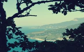 Picture sea, forest, mountains, Crimea