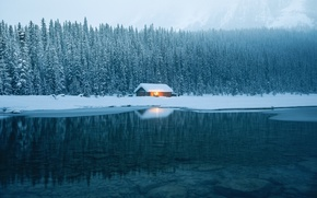 Picture winter, forest, water, nature, house
