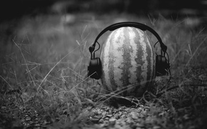 Picture creative, mood, black and white, watermelon, headphones, the idea