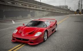 Picture Ferrari, Red, 1995, F50