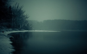 Picture winter, forest, trees, nature, river, landscapes, early in the morning