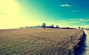 Picture road, field, trees, sunlight