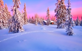 Wallpaper winter, forest, the sky, snow, sunset, house, spruce, glow