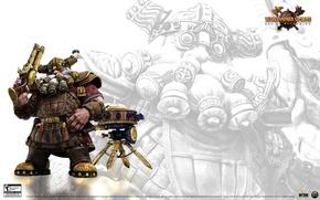 Picture engineer, age of reckonig, Warhammer online