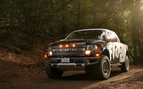 Picture forest, leaves, lights, Ford, Raptor, F-150