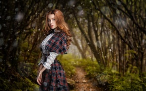 Picture Girl, Look, Forest, Trail, Hair, Dress, Beautiful, Waist, Red