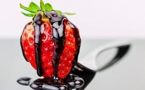 Picture macro, chocolate, strawberries, strawberry, berry