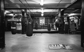 Picture Boxing, Gym, Everlast