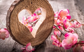 Picture heart, wood, flowers, still life, table