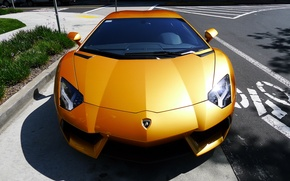 Picture grass, yellow, Parking, lamborghini, Blik, yellow, the view from the top, aventador, lp700-4, Lamborghini, aventador, ...