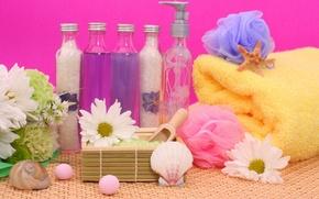 Picture flowers, stones, towel, sink, crystals, flowers, rocks, Spa, bottles, salt, shell, spa, bottle, salt, towel, …
