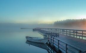 Picture the sky, trees, fog, lake, sunrise, boat, pierce