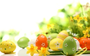 Picture photo, Easter, Eggs, Holiday, Daffodils