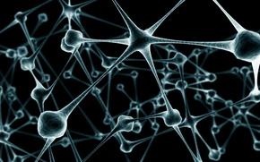 Picture blur, chain, neurons