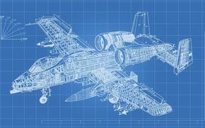 Picture design, scheme, attack, A-10, Thunderbolt II, The thunderbolt II