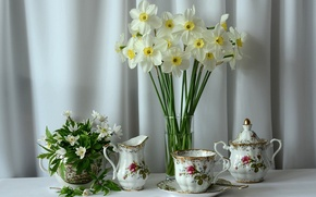 Picture flowers, background, fabric, white, daffodils, tea set