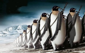 Picture gun, ice, fantasy, weapon, army, animal, rifle, ammunition, the Antarctic, penguins