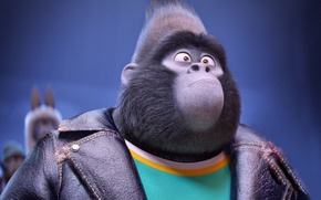 Wallpaper cinema, eyes, movie, animal, gorilla, film, Johnny, official wallpaper, Universal Pictures, animated movie, Illumination Entertainment, ...