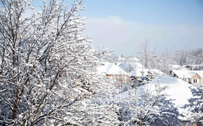 Picture winter, the sky, snow, trees, branches, nature, building, home, roof