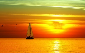 Picture the sky, sunset, birds, Sea, sailboat, bright.