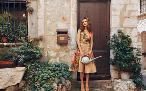 Picture dress, village, lake, vintage, retro style, farmer girl