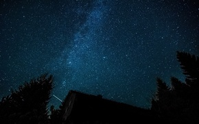 Picture forest, space, stars, trees, The Milky Way, housing