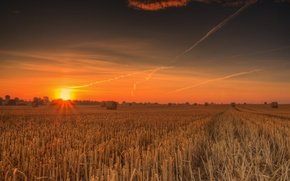 Picture field, sunset, the stubble