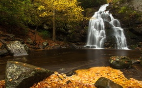Picture autumn, leaves, river, stones, waterfall, cascade, Tennessee, Tn, Great Smoky Mountains National Park, Spruce Flats ...