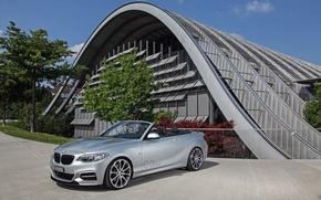 Picture house, BMW, Cabrio, M235i
