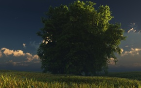 Wallpaper tree, digital, the sky, grass, green and gold, clouds