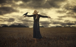 Picture girl, bird, the situation, Scarecrow