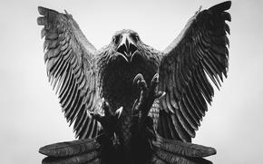 Picture eagle, beak, claws, figurine