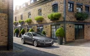 Picture Jaguar, grey, street