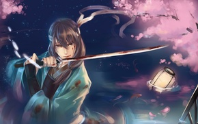 Wallpaper water, fish, blood, sword, katana, petals, Sakura, art, samurai, lantern, guy, raku persimmon, gintama, katsura ...