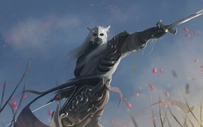 Picture the sky, look, weapons, sword, armor, warrior, mask, art, armor