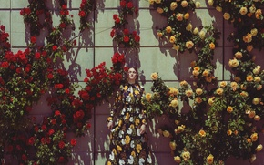 Picture girl, flowers, wall, dress