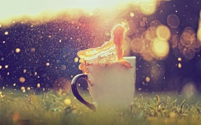Picture grass, glare, splash, Cup, bokeh, caramel
