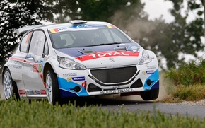 Picture grass, asphalt, trees, rally, peugeot, 208, erc