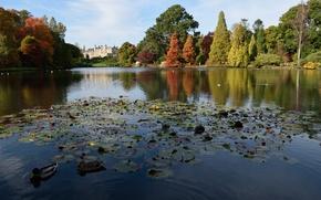 Picture autumn, castle, England, Lake, Autumn, lake, Castle, England, Colors, Sheffield park, Park Sheffield