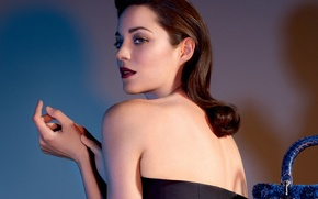 Wallpaper Marion Cotillard, bag, actress, Lady Dior, Jean-Baptiste Mondino, Marion Cotillard, hairstyle, makeup, photographer, model