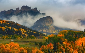 Wallpaper autumn, forest, trees, mountains, fog, paint, Colorado, USA, state