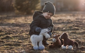 Picture toys, boy, horses