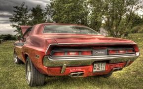 Picture car, Dodge, challenger, power, r/t, orange, musclecar