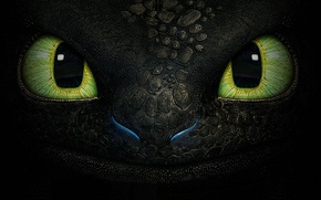 Picture eyes, fantasy, dragon, cartoon, texture, toothless, the night fury
