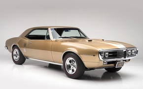 Picture muscle car, muscle car, 1967, pontiac, Pontiac, firebird