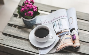 Picture flower, coffee, good morning, reading, magazine
