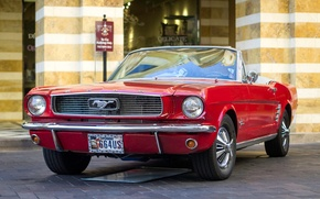 Picture red, retro, Mustang, classic, 1966