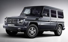 Picture background, Mercedes-Benz, Mercedes, jeep, SUV, the front, g, Gelandewagen, g-class, Bluetec, G-class, G350