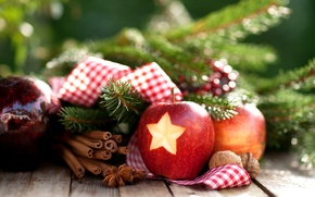 Picture winter, branches, star, Apple, New Year, Christmas, nuts, cinnamon, Christmas, holidays, New Year, star anise, …